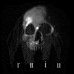 RUIN - Skull Shirt